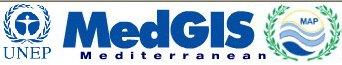 MedGIS Logo
