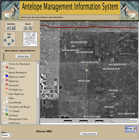 Antelope Managment Information System